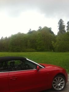 Cabrio Audi A5 in the greens