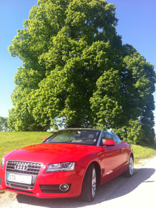 Audi A5 Cabrio, Alte LInde in Starnberg-Söcking