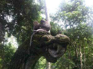 Affenwald in Ubud, Bali