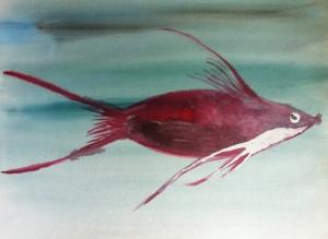 Aquarell Fischi